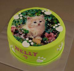 Torta s mačiatkom