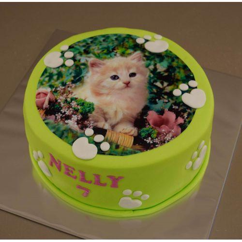 Najnovšie torty » Torta Narodeninová torta s jedlým obrázkom